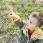 お家で化石発掘体験 !子供の探求心をくすぐる『触れる図鑑』